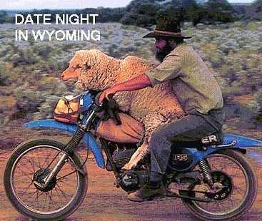 dating wyoming