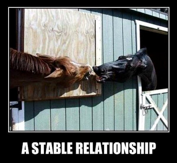 a-stable-relationship-funny-demotivator